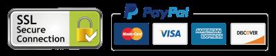 paypal logo_工作區域 1
